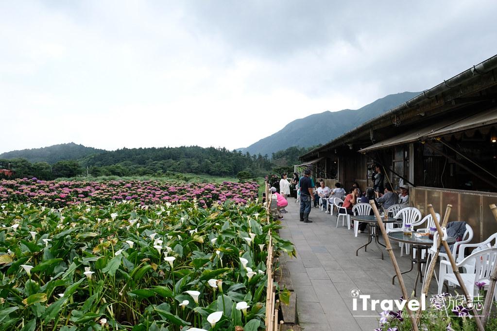 頂湖財福繡球花園 Jai Fu Garden (73)