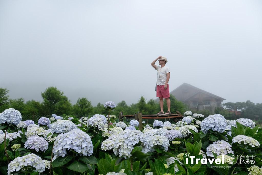 頂湖財福繡球花園 Jai Fu Garden (48)