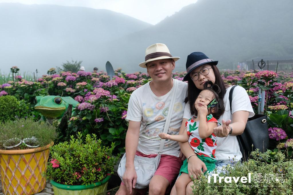 頂湖財福繡球花園 Jai Fu Garden (35)