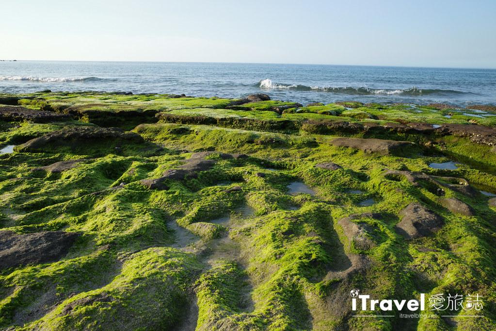 老梅綠石槽 Green Reef at Laomei (6)