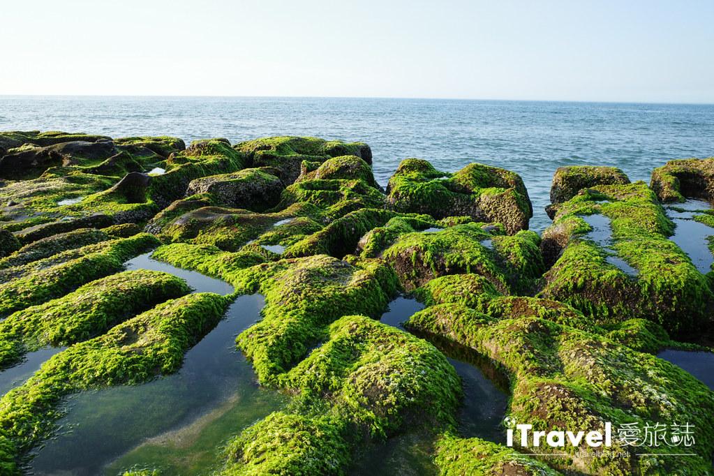 老梅綠石槽 Green Reef at Laomei (3)