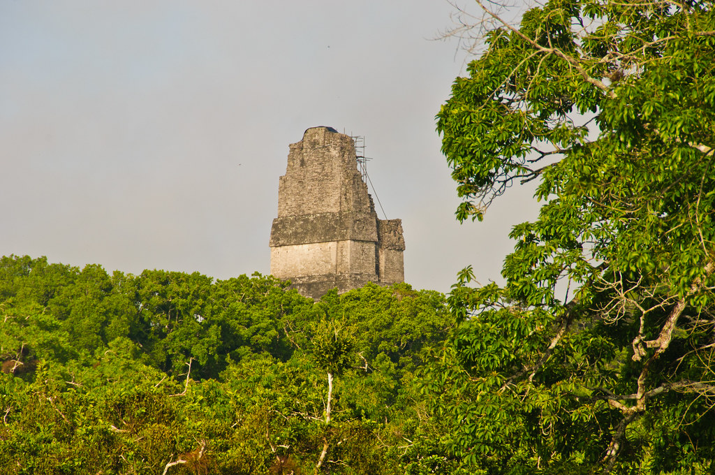 Temple 1, Tikal from Temple Q