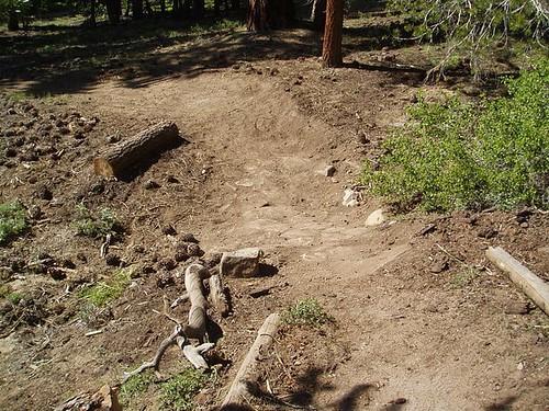 TAMBA Trail Day