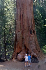 Sequoia National Park.....Peace people :)