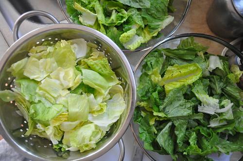 Wop Salad - Prep