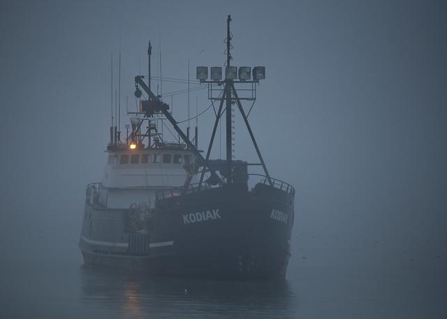 The Kodiak