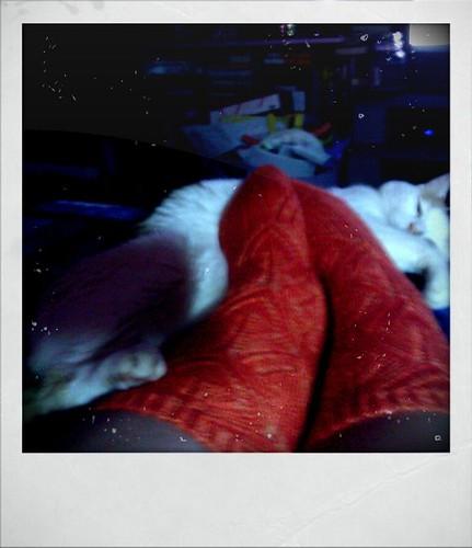 Orange pekoe socks, all done!
