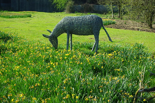 20100417-11_Donkey Sculpture - Rugby near Avon Mill Pub by gary.hadden