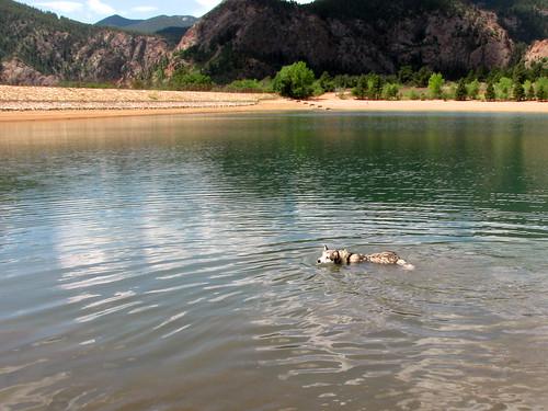 Luka swims
