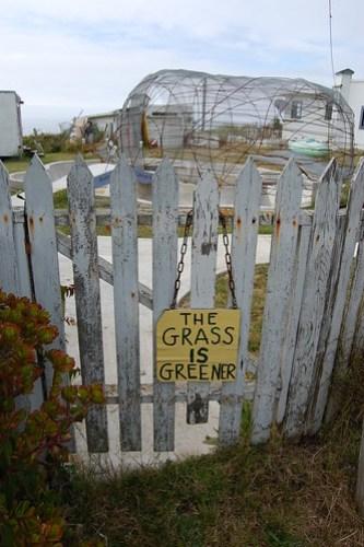 Grass is Greener.