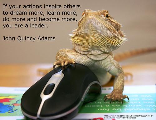 Lizard_Learn by vdowney, on Flickr
