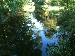Wielka woda w Zielonej by Polek