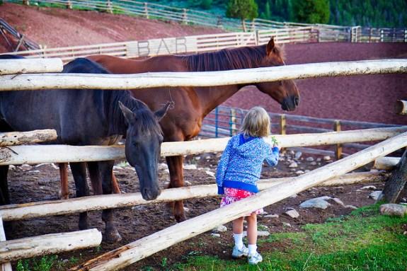 Black Mountain Colorado Dude Ranch girl fence horse