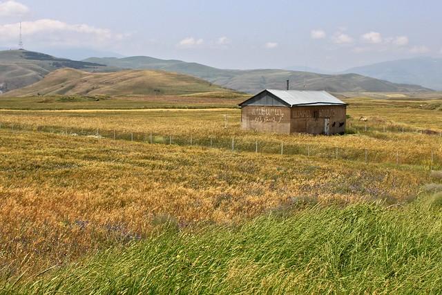 Les champs de Zangezur, Arménie