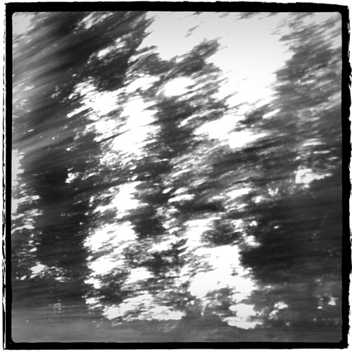 20110704 Treeline Driveby by opusinfinity