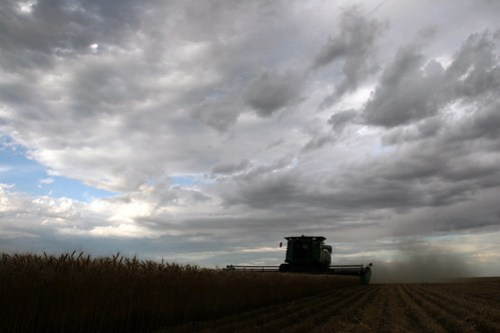 The combine is surrounded by what looks like will soon be rain.