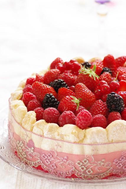Red berries charlotte