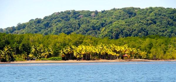 Camino a Bahía Drake