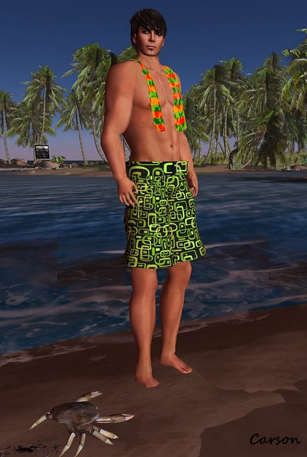 22769 - Retro Surfer Shorts and Towel  OX Hunt