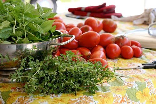 garden fresh herbs & farm fresh tomatoes