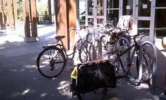 Family bikes @ REI