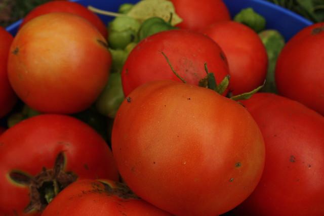 Tomato-Tomatillo