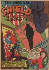 shield 002