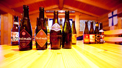 Westmalle Trappists and friends