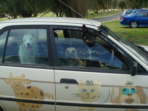 my boyz with shorty in my old funky car