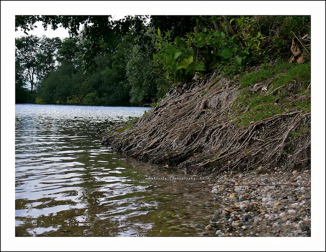 #198/365 Lake II