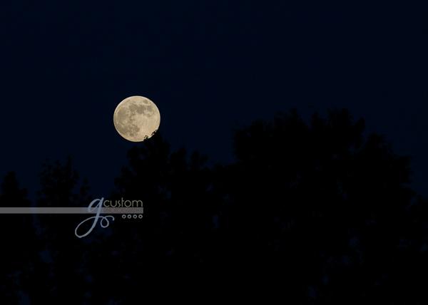 Full moon July 2011
