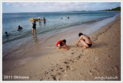 natura149_20110628_033.jpg