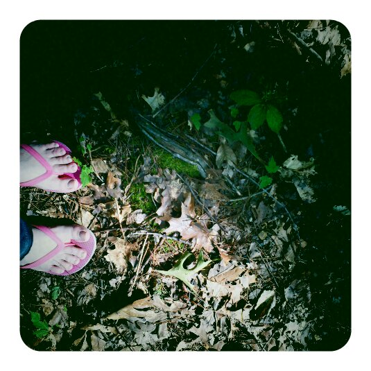 Moss and toes - Jacobs Creek