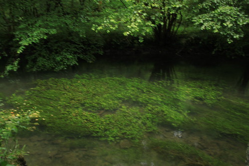 Dovedale08/2011