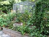 Raised Beds with Fruits-Weaverville