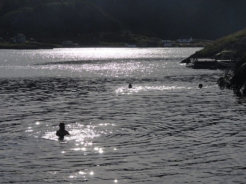 Sun-sparkled swimmers.