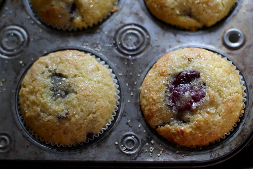 baked muffins, close-up