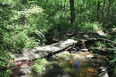 Harriman State Park - 2 084