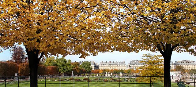Jardin des tuileries, Paris