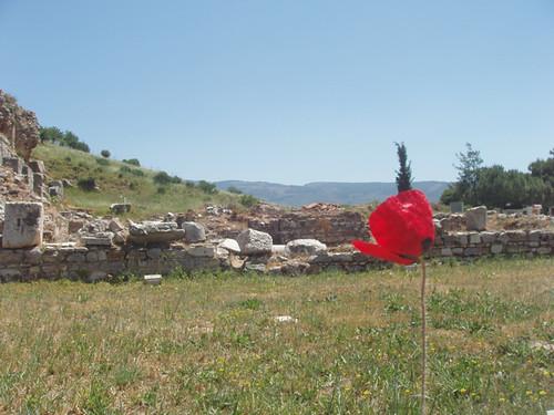 TT-red-201005030002_Efes-original-web-before
