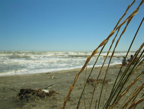 Profumo di mare by [Piccola_iena]