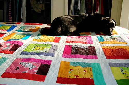 Simon and the quilt
