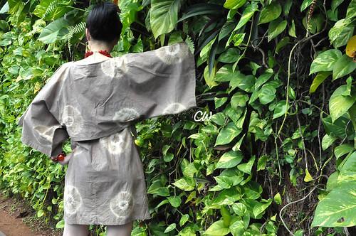 Dress Samurai2