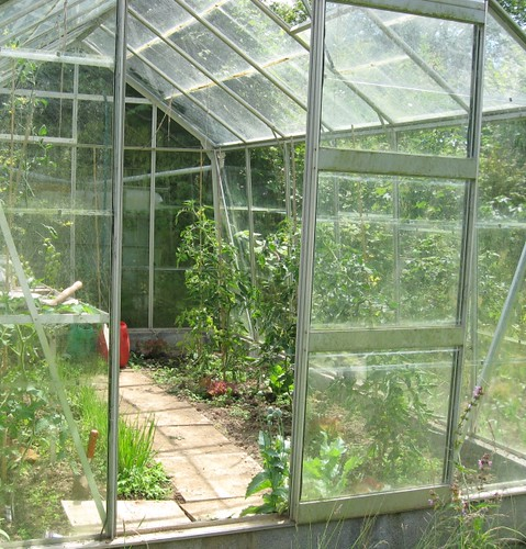 new greenhouse