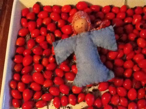 Soul Sister on a bed of rose hips