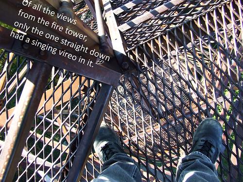 Olson Tower postcard
