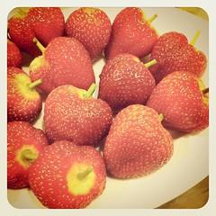 Big plump strawberries for dessert