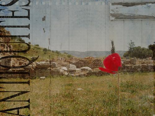 TT-red-201005030002_Efes-after-web-versionB