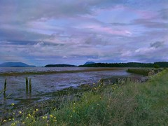 Samish Island at low tide