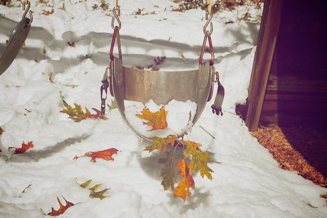 Swingin' leaves